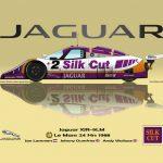 1988_jaguar_2_art_03_postkaartklein